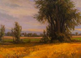 Cottonwoods and Prairie Flowers 30x40, Mary Pettis