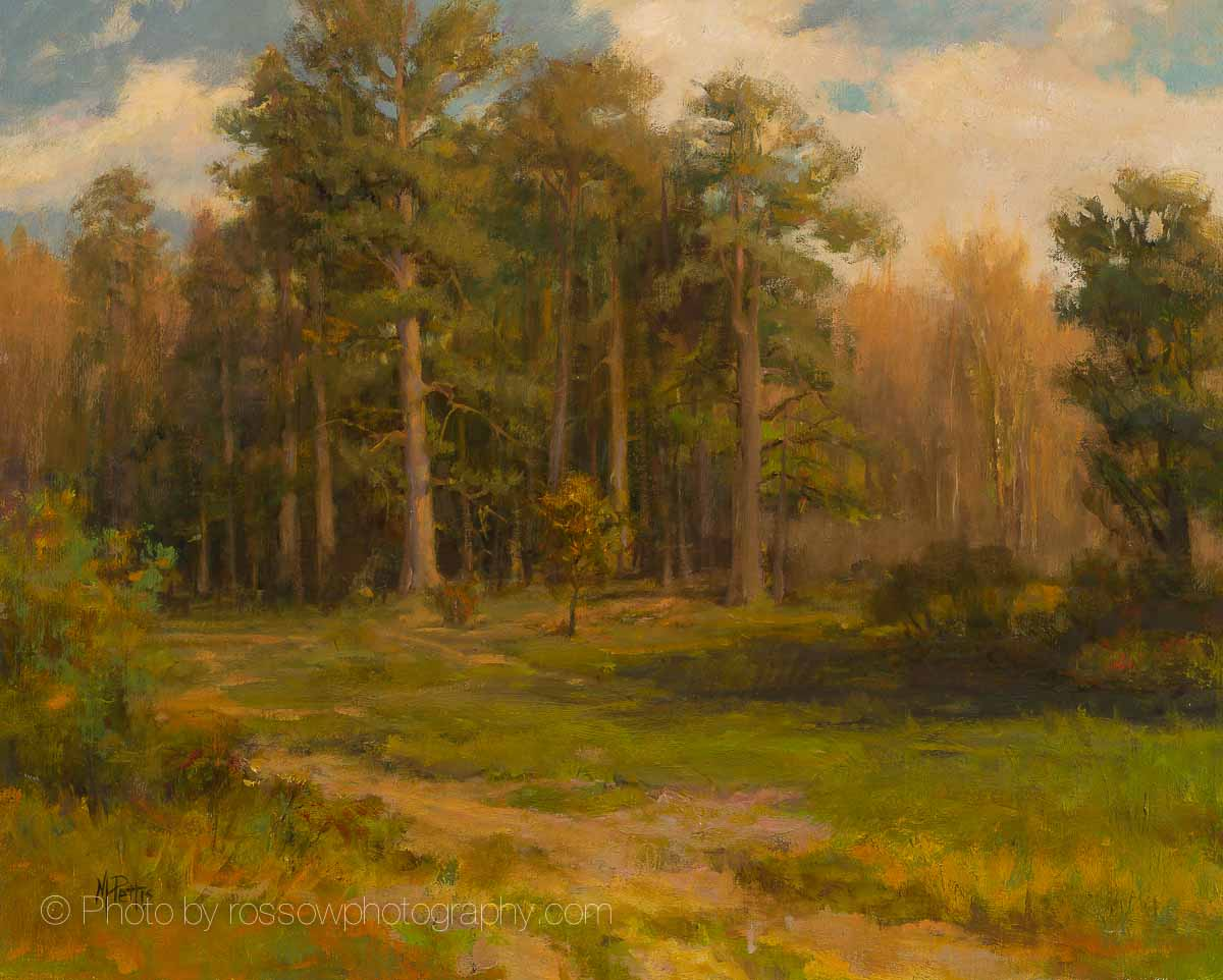 The Pines at Never's Dam 16 x 20, Mary Pettis