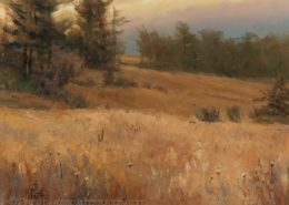 Artwork Photography of Meadow-at-Dusk-by-Mary Pettis