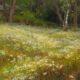 Wild Daisies - Glorious Spring-Mary Pettis