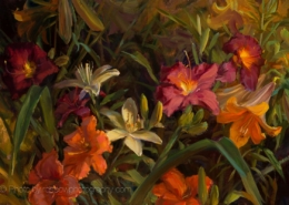 My Summer Lilies - Mary Pettis