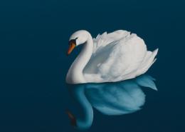 Jasmine-painting by-Matthew Rucker-detail